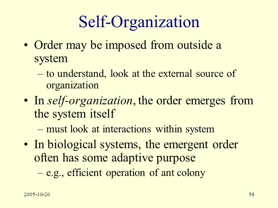 2005-10-2056 Self-Organization Order may be imposed from outside a system –to understand, look at the external source of organization In self-organization, the order emerges from the system itself –must look at interactions within system In biological systems, the emergent order often has some adaptive purpose –e.g., efficient operation of ant colony