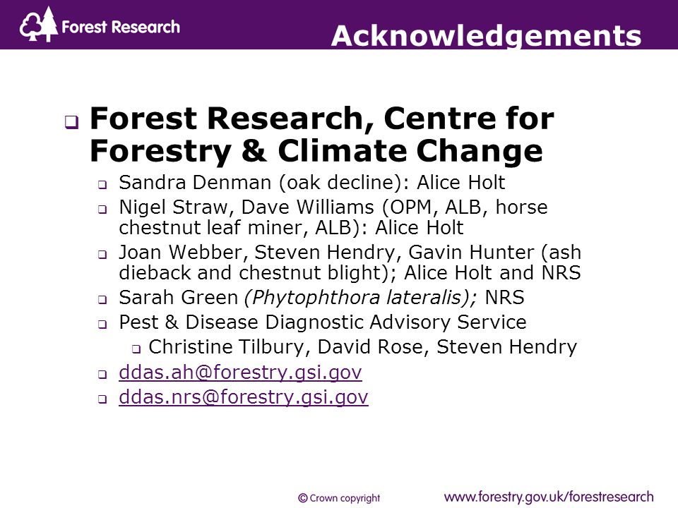  Forest Research, Centre for Forestry & Climate Change  Sandra Denman (oak decline): Alice Holt  Nigel Straw, Dave Williams (OPM, ALB, horse chestnut leaf miner, ALB): Alice Holt  Joan Webber, Steven Hendry, Gavin Hunter (ash dieback and chestnut blight); Alice Holt and NRS  Sarah Green (Phytophthora lateralis); NRS  Pest & Disease Diagnostic Advisory Service  Christine Tilbury, David Rose, Steven Hendry  ddas.ah@forestry.gsi.gov ddas.ah@forestry.gsi.gov  ddas.nrs@forestry.gsi.gov ddas.nrs@forestry.gsi.gov Acknowledgements