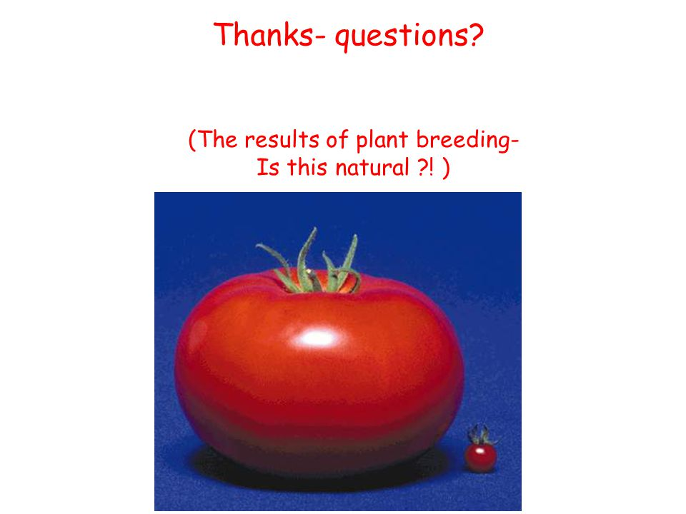 (The results of plant breeding- Is this natural ! ) Thanks- questions