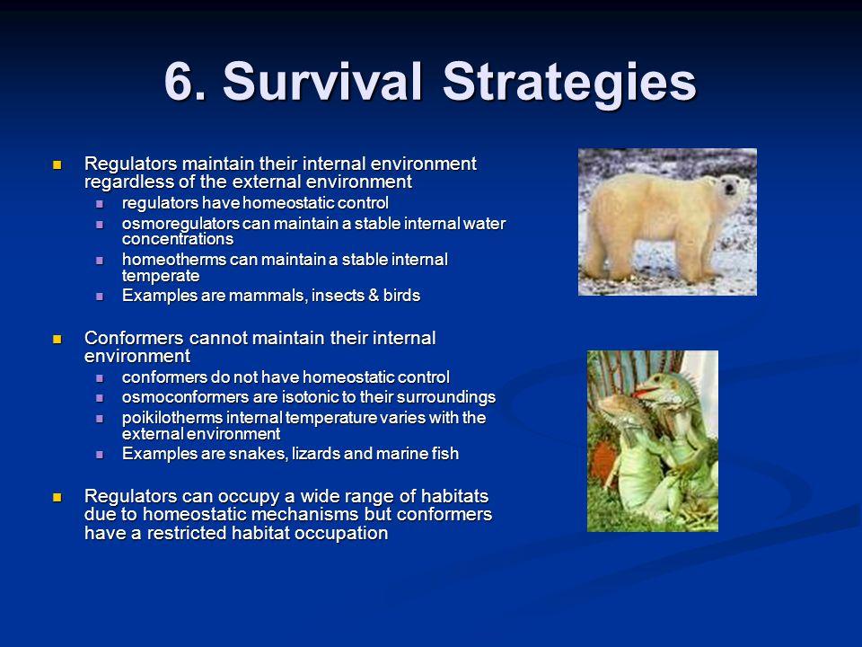 6. Survival Strategies Regulators maintain their internal environment regardless of the external environment Regulators maintain their internal enviro