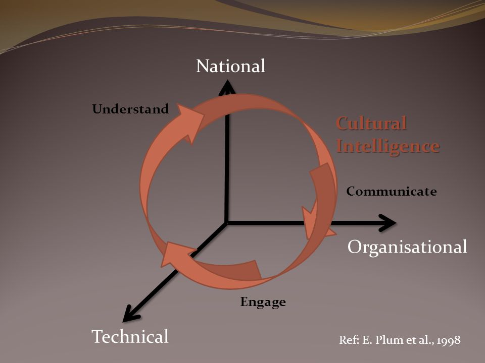 National Technical Organisational Understand Engage Communicate Cultural Intelligence Ref: E. Plum et al., 1998