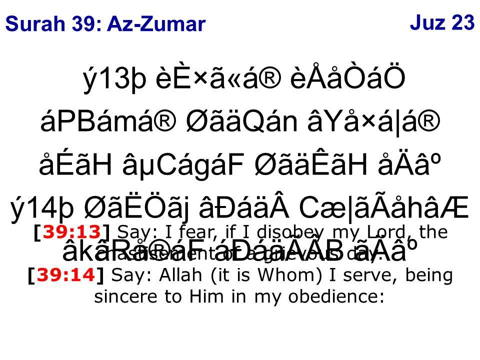 ý13þ èÈ×ã«á® èÅåÒáÖ áPBámá® ØãäQán âYå×á|á® åÉãH âµCágáF ØãäÊãH åÄ⺠ý14þ ØãËÖãj âÐáäCæ|ãÃåhâÆ âkâRå®áF áÐáäÃÂB ãÄ⺠[39:13] Say: I fear, if I disobey my Lord, the chastisement of a grievous day.