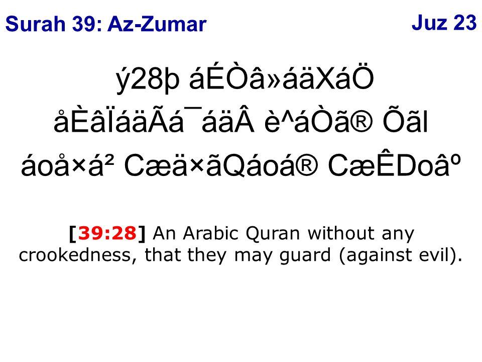 ý28þ áÉÒâ»áäXáÖ åÈâÏáäÃá¯áäè^áÒã® Õãl áoå×á² Cæä×ãQáoá® CæÊDo⺠[39:28] An Arabic Quran without any crookedness, that they may guard (against evil).