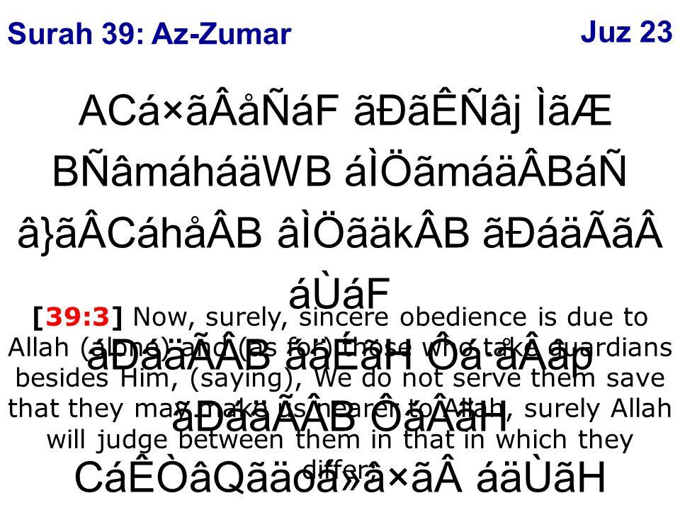âÈâ¿á×ãWåGáÖ ÉáF ãÄåRẠÌãÆ âÐáBÒâÇãÃåsáFáÑ åÈâ¿ãäQán ÔáÂãH BÒâR×ãÊáFáÑ ý54þ áÉÑâoá ËâW áÙ áäÈâ[ âPBámá¯åÂB [39:54] And return to your Lord time after time and submit to Him before there comes to you the punishment, then you shall not be helped.