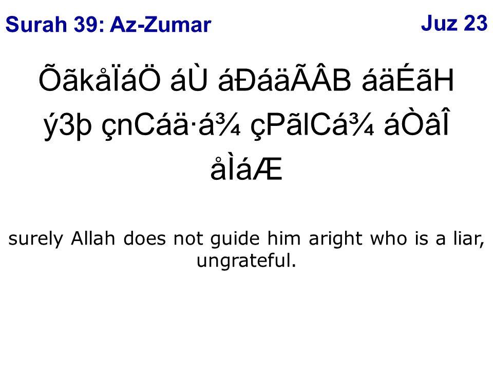 ÕãkåÏáÖ áÙ áÐáäÃÂB áäÉãH ý3þ çnCáä·á¾ çPãlCá¾ áÒâÎ åÌáÆ surely Allah does not guide him aright who is a liar, ungrateful.