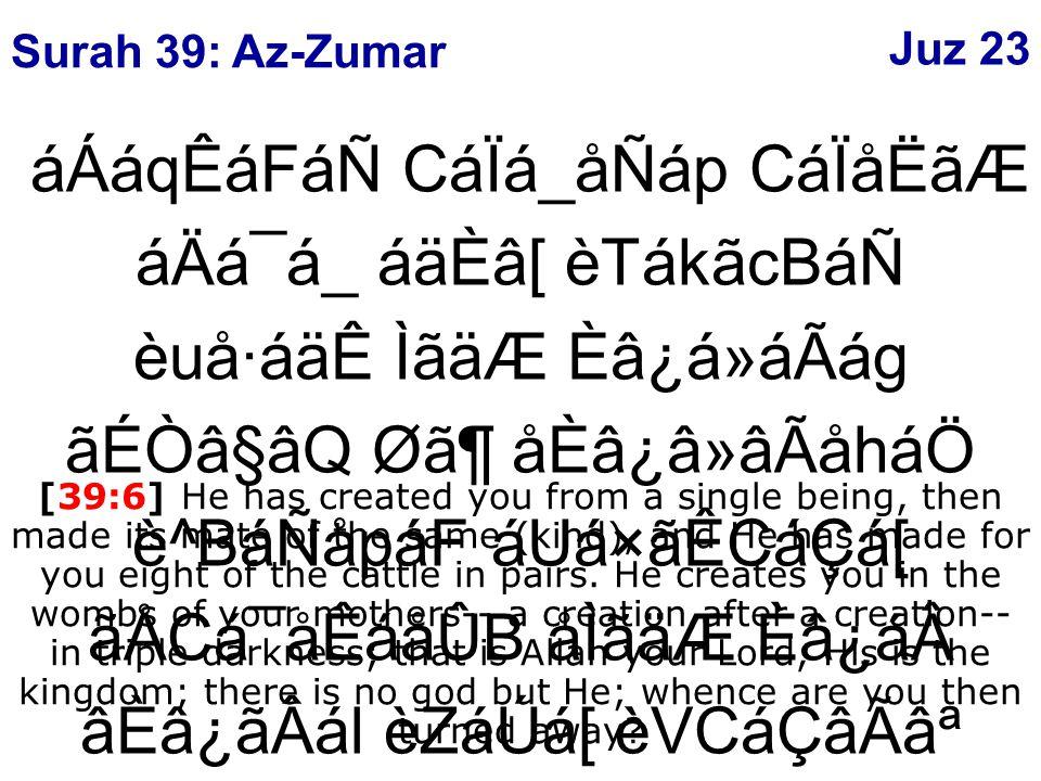 ¡ånáåÛB Ø㶠ÌáÆáÑ ãVBáÑCáÇáätÂB Ø㶠ÌáÆ á¼ã¯á ᶠãnÒâä ÂB Ø㶠áiã·âÊáÑ áÉÑâoâ«ËáÖ çÅCá×㺠ÈâÎ BálãIᶠÓáoågâF ãÐ×㶠áiã·âÊ áäÈâ[ âÐáäÃÂB ACáw ÌáÆ áäÙãH ý68þ [39:68] And the trumpet shall be blown, so all those that are in the heavens and all those that are in the earth shall swoon, except such as Allah please; then it shall be blown again, then lo.