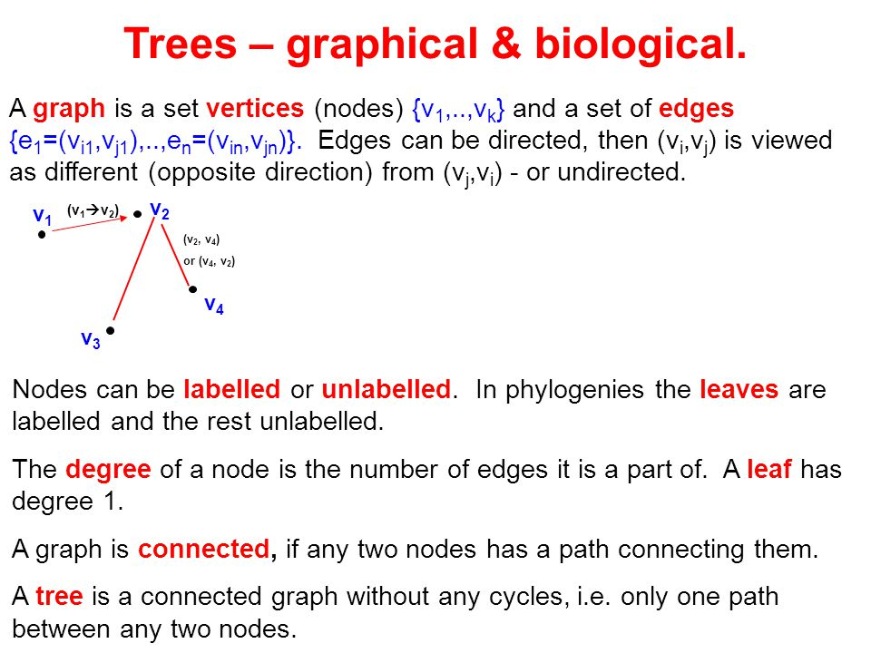 Trees – graphical & biological.
