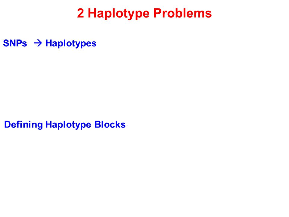 2 Haplotype Problems SNPs  Haplotypes Defining Haplotype Blocks