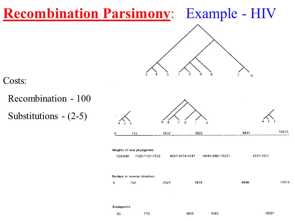 Recombination Parsimony: Example - HIV Costs: Recombination - 100 Substitutions - (2-5)