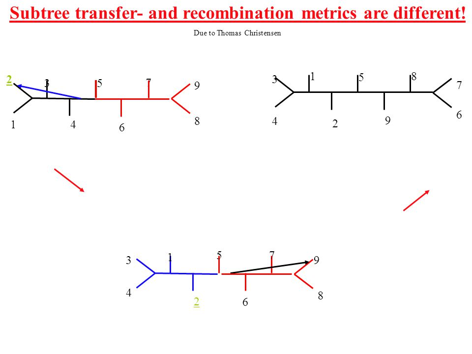 6 41 1 2 3 4 7 6 9 8 5 8 7 3 2 5 9 1 2 3 4 5 6 7 9 8 Subtree transfer- and recombination metrics are different.