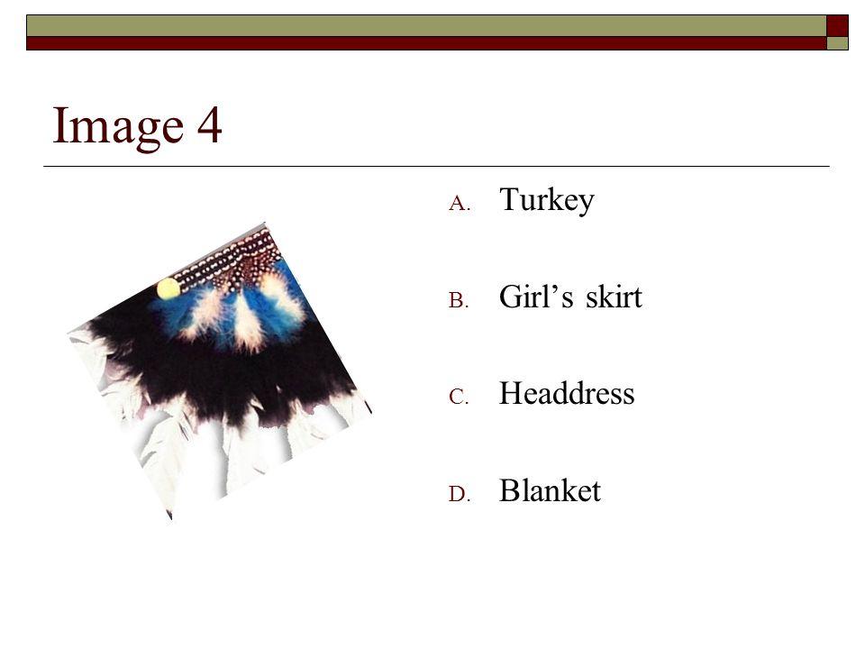 Image 4 A. Turkey B. Girl's skirt C. Headdress D. Blanket