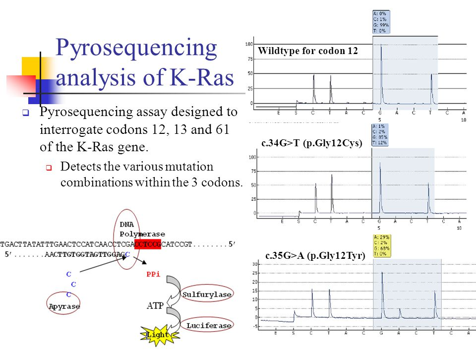 Pyrosequencing analysis of K-Ras  Pyrosequencing assay designed to interrogate codons 12, 13 and 61 of the K-Ras gene.  Detects the various mutation