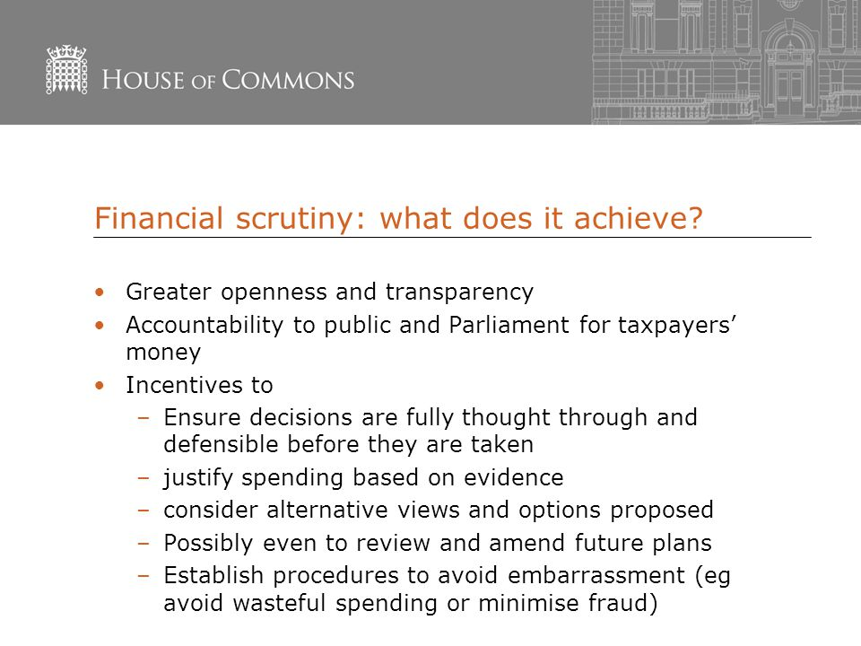 Financial scrutiny: what does it achieve.