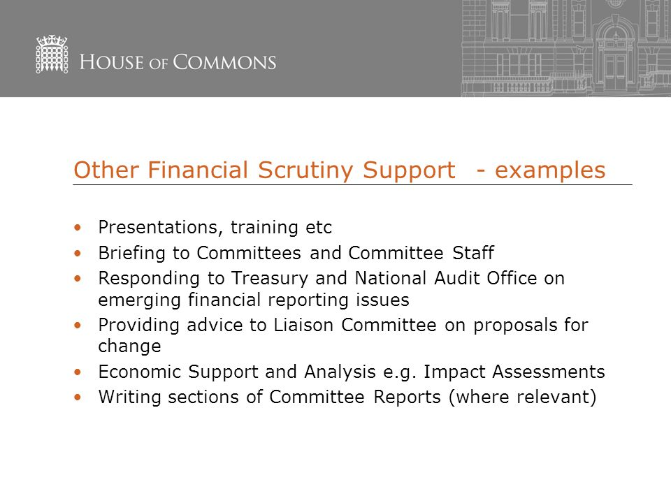Other Financial Scrutiny Support- examples Presentations, training etc Briefing to Committees and Committee Staff Responding to Treasury and National Audit Office on emerging financial reporting issues Providing advice to Liaison Committee on proposals for change Economic Support and Analysis e.g.