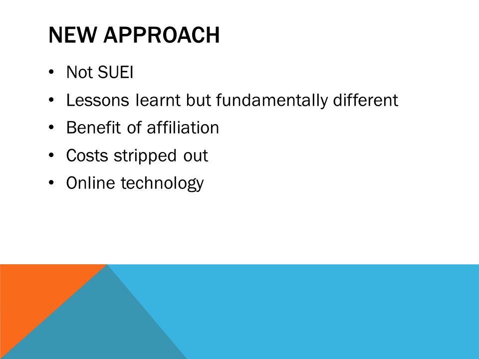 NEW APPROACH Not SUEI Lessons learnt but fundamentally different Benefit of affiliation Costs stripped out Online technology