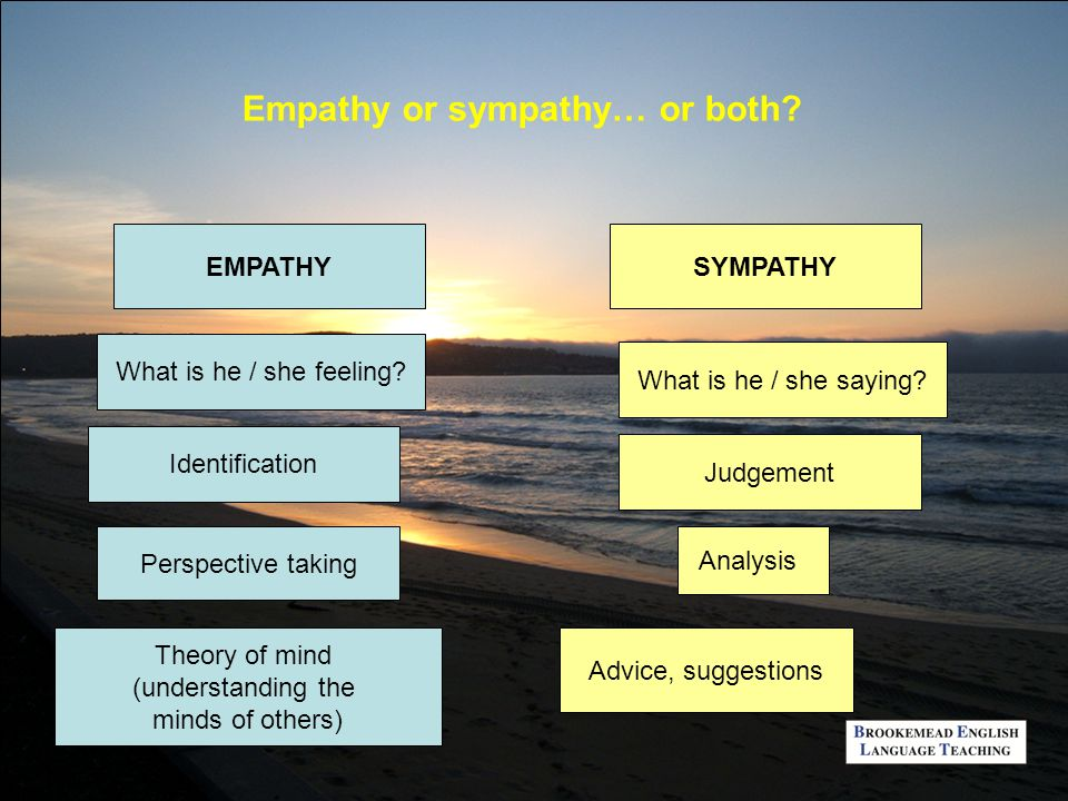 Empathy, Interaction and Caring: Teachers Roles in a Constrained Environment, Bridget Cooper, Leeds Metropolitan University, 2004 An attitude of care in teaching and learning emerges through profound empathy in one-to-one relationships ….