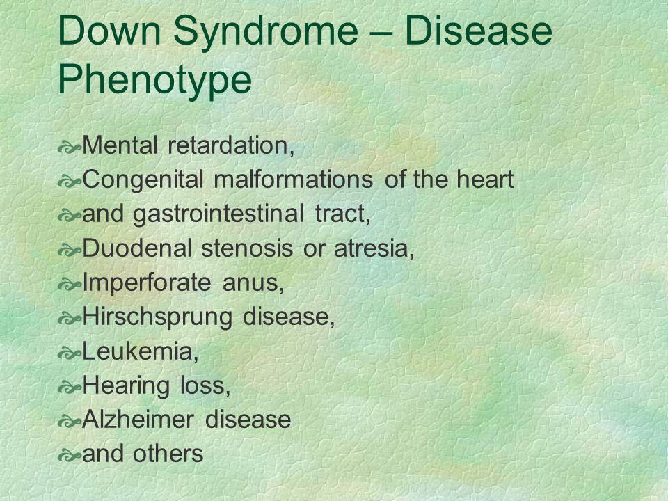 Down Syndrome – Disease Phenotype  Mental retardation,  Congenital malformations of the heart  and gastrointestinal tract,  Duodenal stenosis or atresia,  Imperforate anus,  Hirschsprung disease,  Leukemia,  Hearing loss,  Alzheimer disease  and others