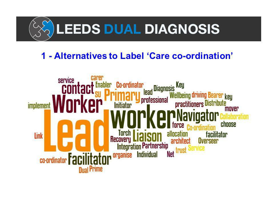 1 - Alternatives to Label 'Care co-ordination'