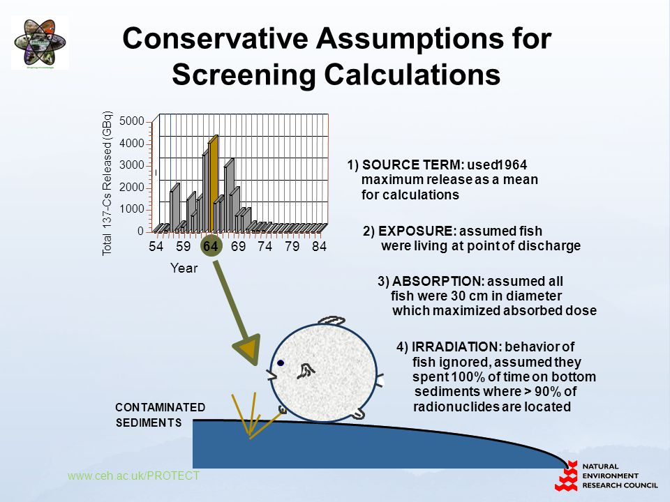 Conservative Assumptions for Screening Calculations www.ceh.ac.uk/PROTECT