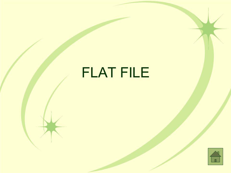 FLAT FILE