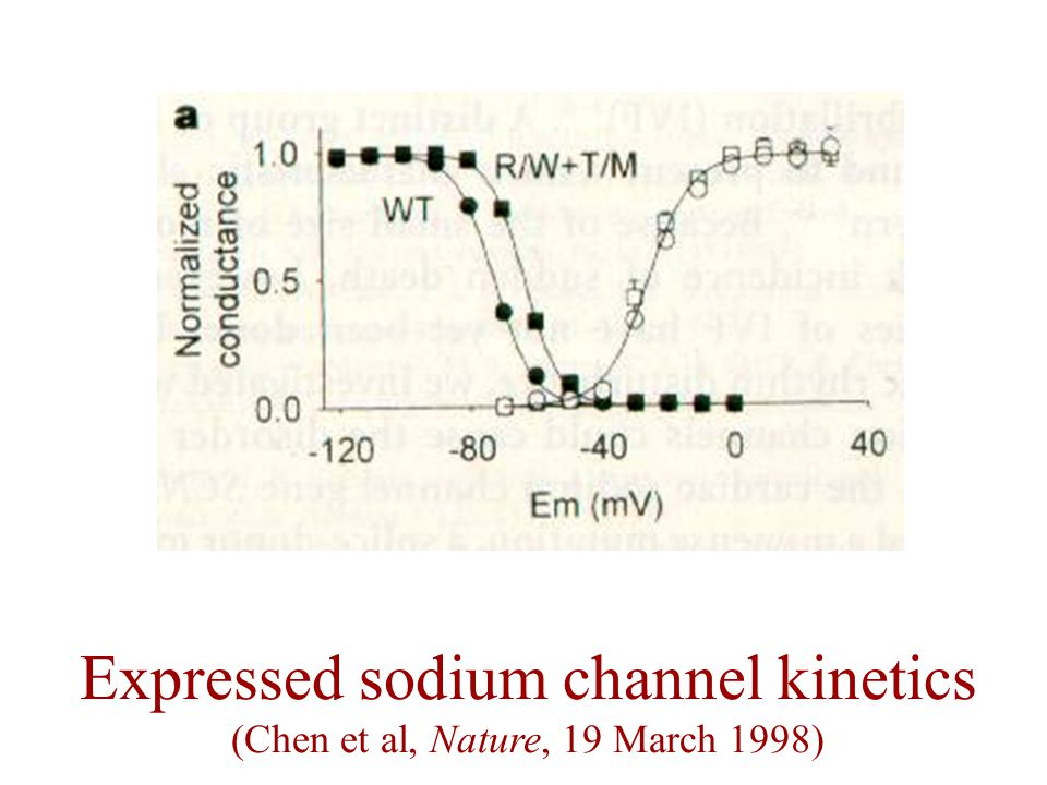 Expressed sodium channel kinetics (Chen et al, Nature, 19 March 1998)