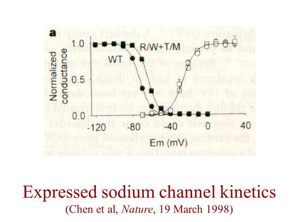 Expressed sodium channel kinetics (Chen et al, Nature, 19 March 1998)