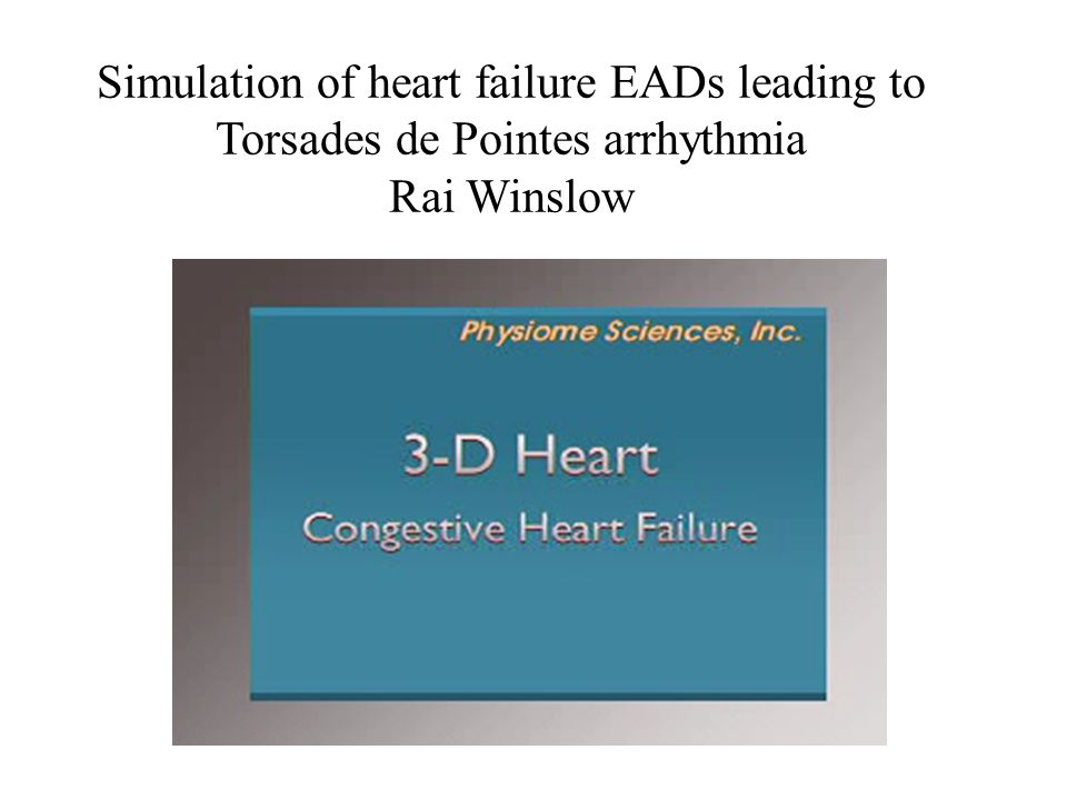Simulation of heart failure EADs leading to Torsades de Pointes arrhythmia Rai Winslow