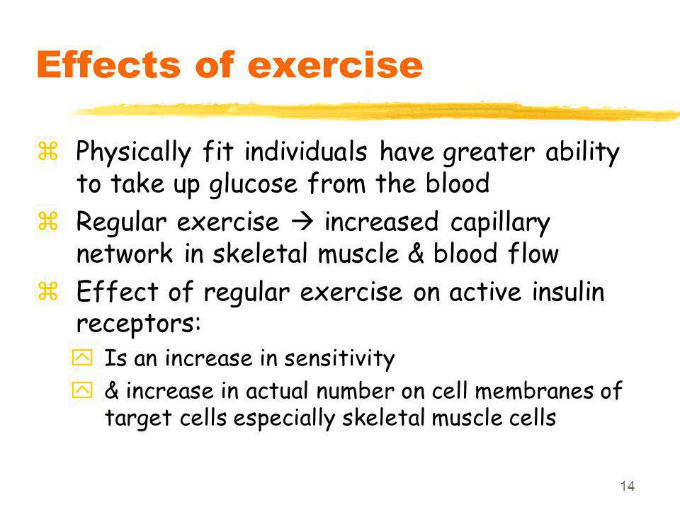14 Effects of exercise zPhysically fit individuals have greater ability to take up glucose from the blood zRegular exercise  increased capillary network in skeletal muscle & blood flow zEffect of regular exercise on active insulin receptors: yIs an increase in sensitivity y& increase in actual number on cell membranes of target cells especially skeletal muscle cells