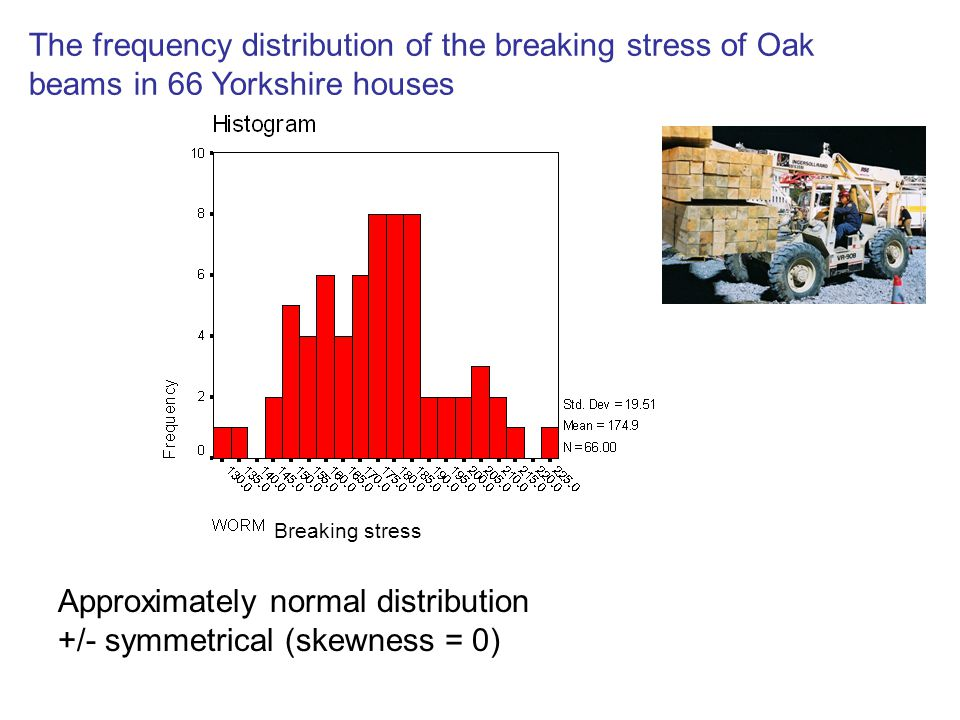 The frequency distribution of the breaking stress of Oak beams in 66 Yorkshire houses Approximately normal distribution +/- symmetrical (skewness = 0) Breaking stress