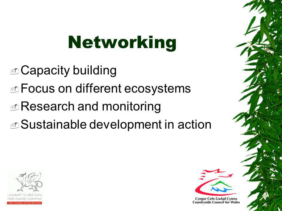 Networking  Capacity building  Focus on different ecosystems  Research and monitoring  Sustainable development in action