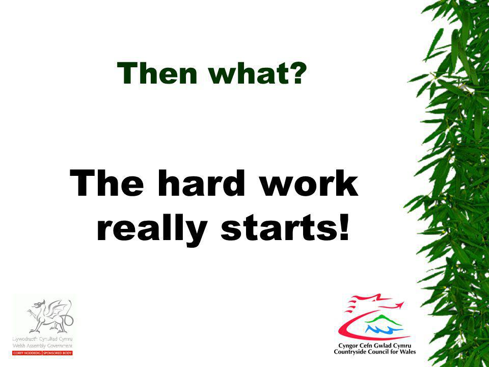 Then what The hard work really starts!