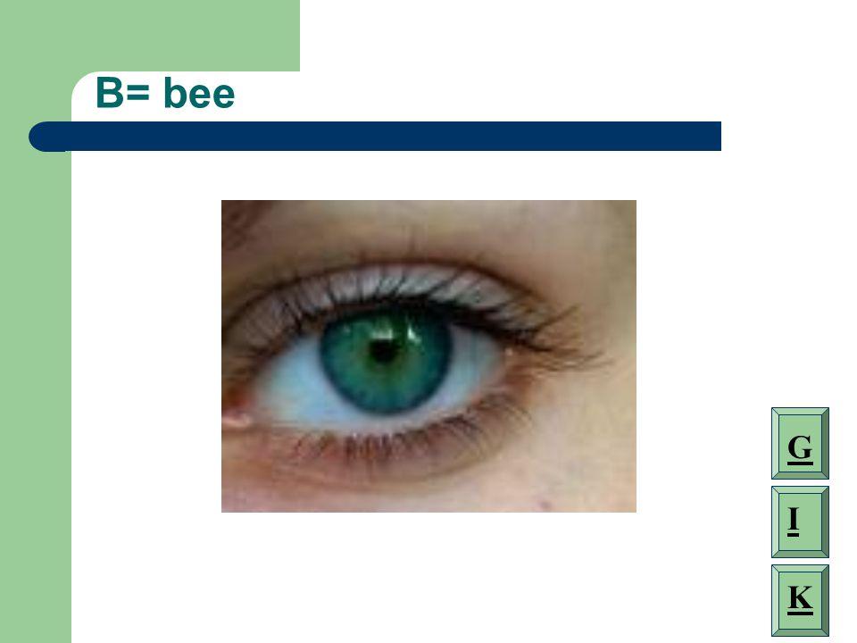 B= bee G I K