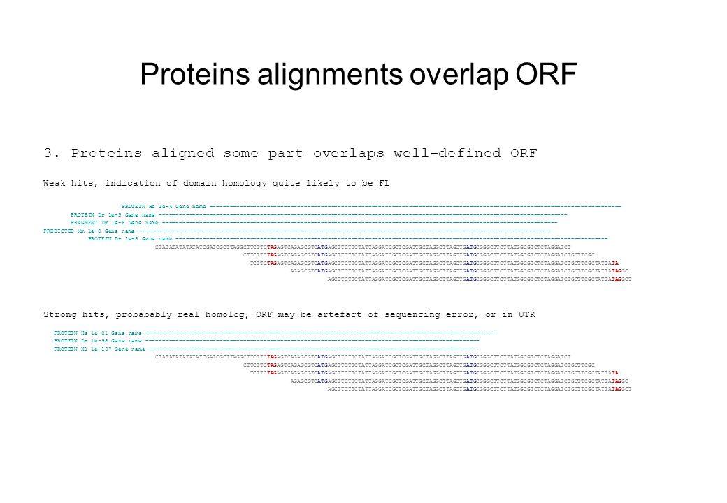 Protein alignment has upstream STOP 4.