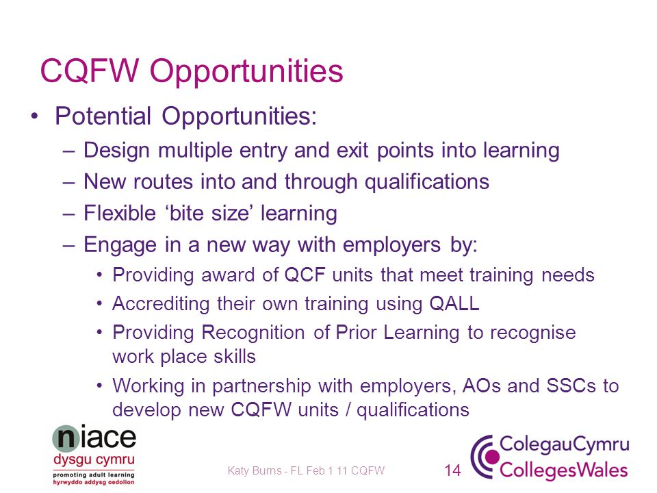 CQFW Opportunities Potential Opportunities: –Design multiple entry and exit points into learning –New routes into and through qualifications –Flexible 'bite size' learning –Engage in a new way with employers by: Providing award of QCF units that meet training needs Accrediting their own training using QALL Providing Recognition of Prior Learning to recognise work place skills Working in partnership with employers, AOs and SSCs to develop new CQFW units / qualifications 14 Katy Burns - FL Feb 1 11 CQFW