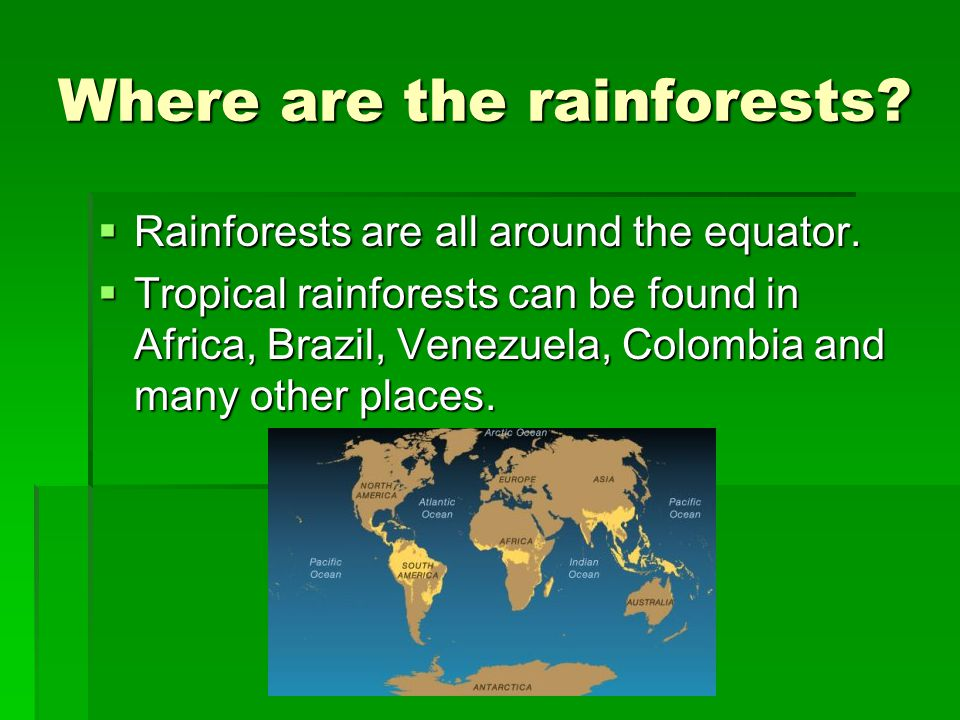 Where are the rainforests. RRRRainforests are all around the equator.