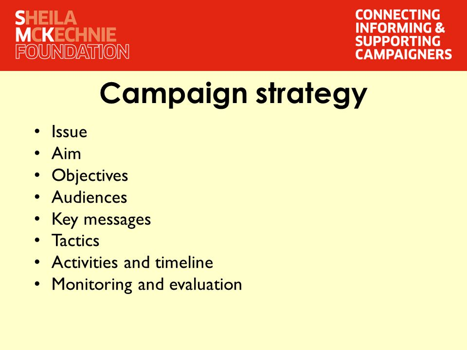 Campaign strategy Issue Aim Objectives Audiences Key messages Tactics Activities and timeline Monitoring and evaluation