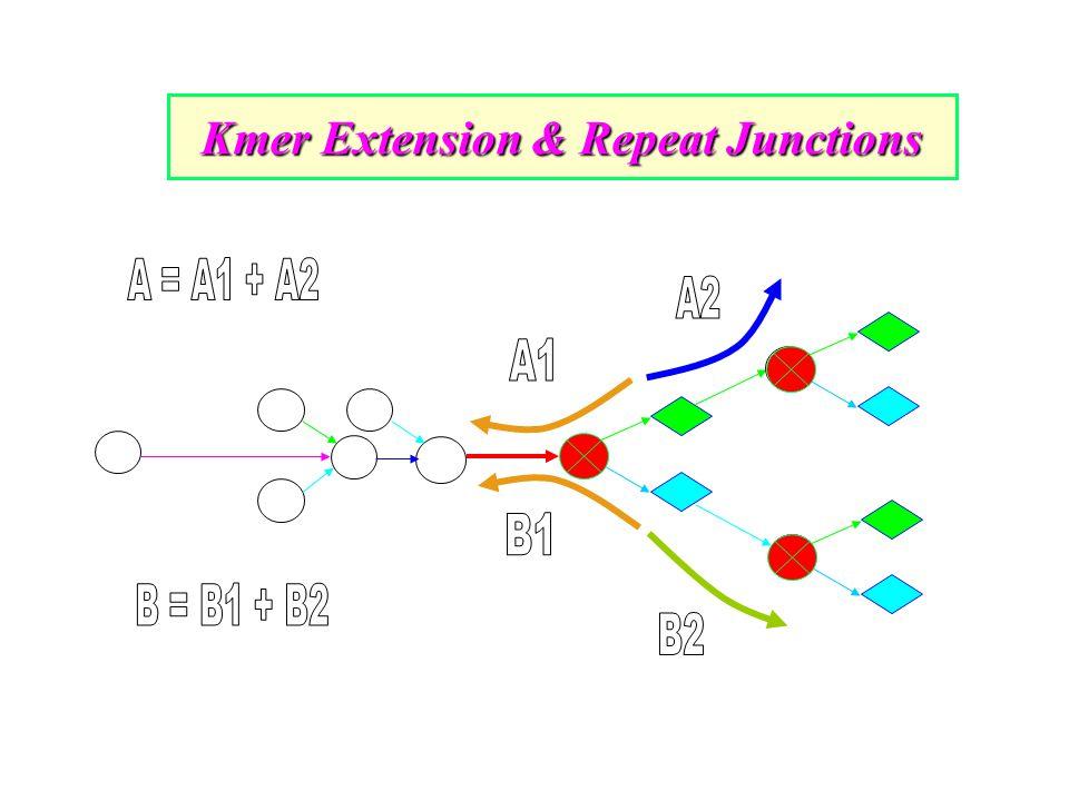 Kmer Extension & Repeat Junctions