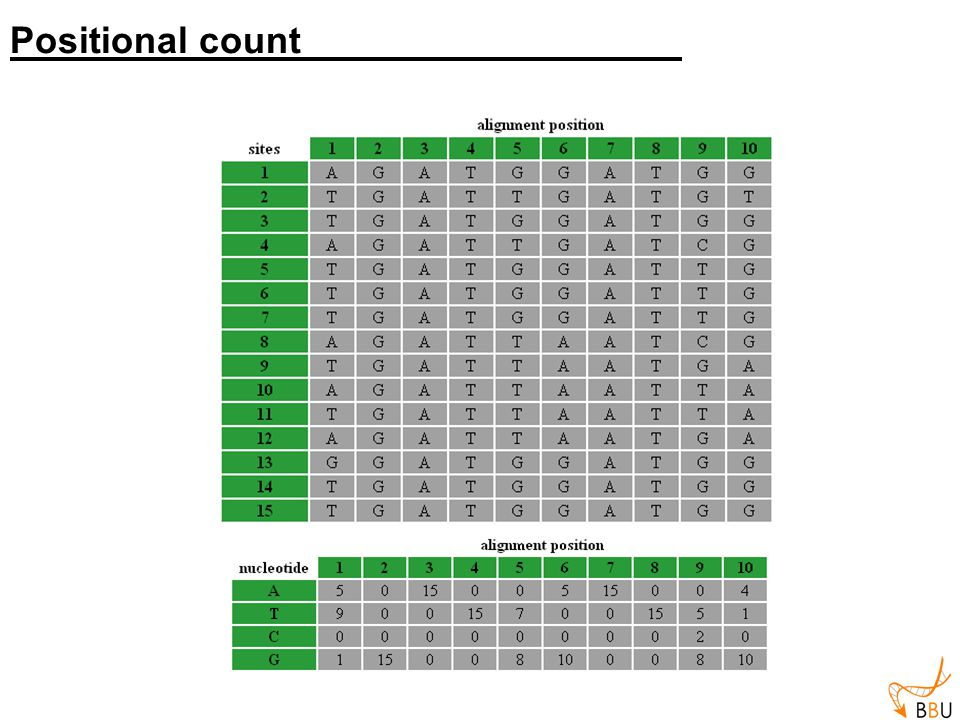 12345678910 0.3 0.01.00.0 0.31.00.0 0.3 0.6 0.0 1.00.50.0 1.00.30.1 0.0 0.10.0 0.11.00.0 0.50.70.0 0.50.7 A T C G Frequency matrix