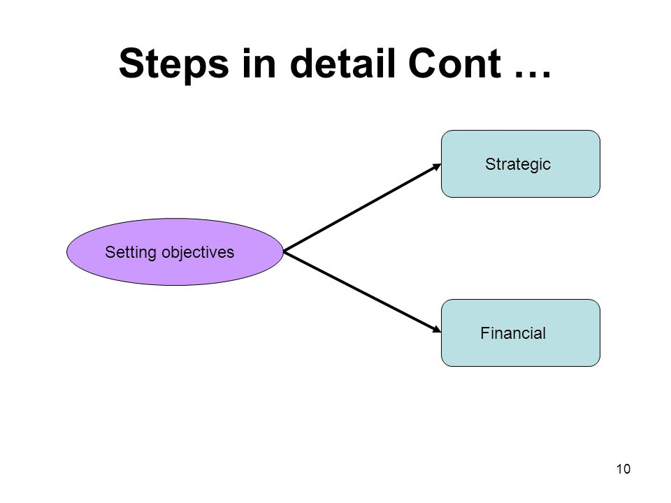 Steps in detail Cont … Setting objectives Strategic Financial 10