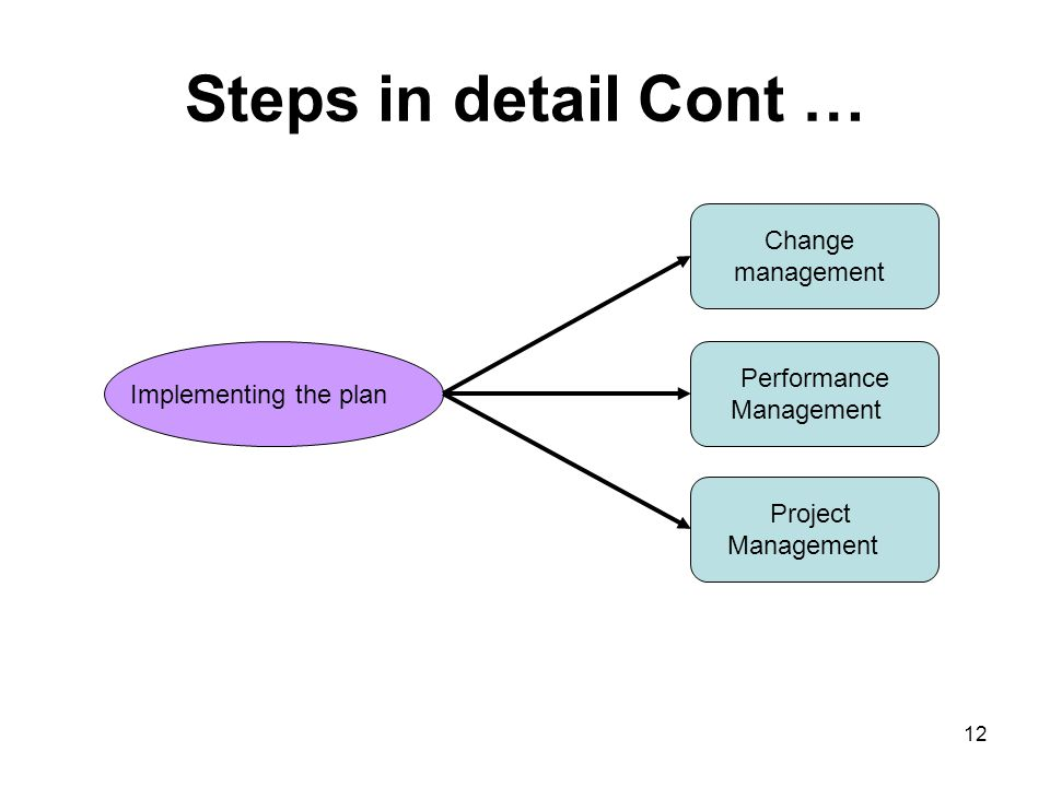 Steps in detail Cont … Implementing the plan Change management Project Management Performance Management 12