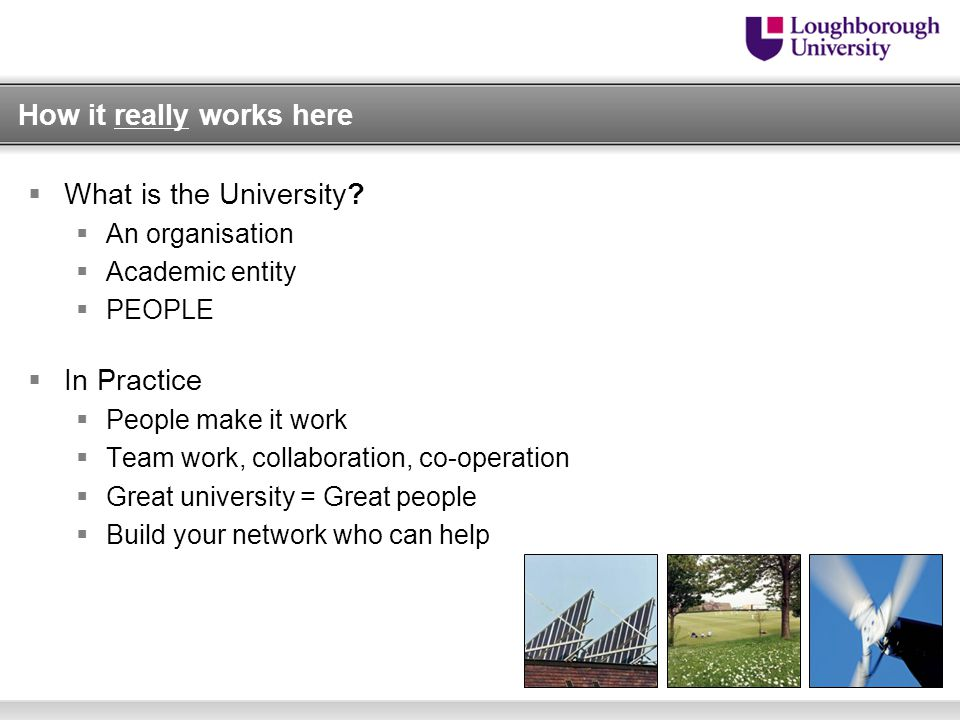 How it really works here  What is the University.