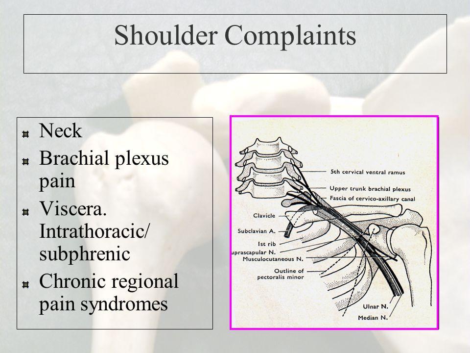 Shoulder Complaints Neck Brachial plexus pain Viscera. Intrathoracic/ subphrenic Chronic regional pain syndromes
