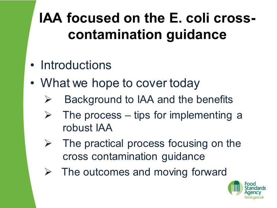 IAA focused on the E.