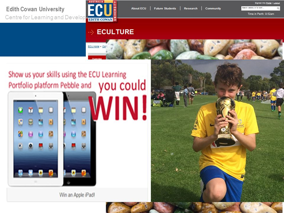 Your School or Centre name here Edith Cowan University Split Categories –First Years –Other Undergrad –Academic Staff –Graduated Students (2 nd year of competition) –Professional Staff (2 nd year of competition) How to Enter –Self subscription workspace –Entry form was an interactive Pebble Template –Get in touch with me.