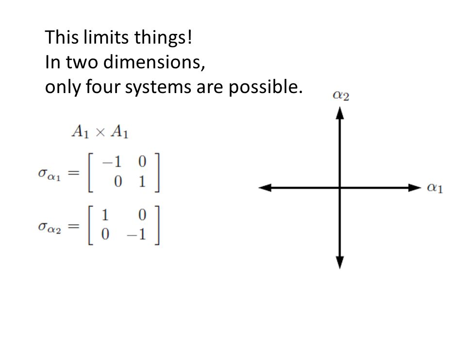 This limits things! In two dimensions, only four systems are possible.