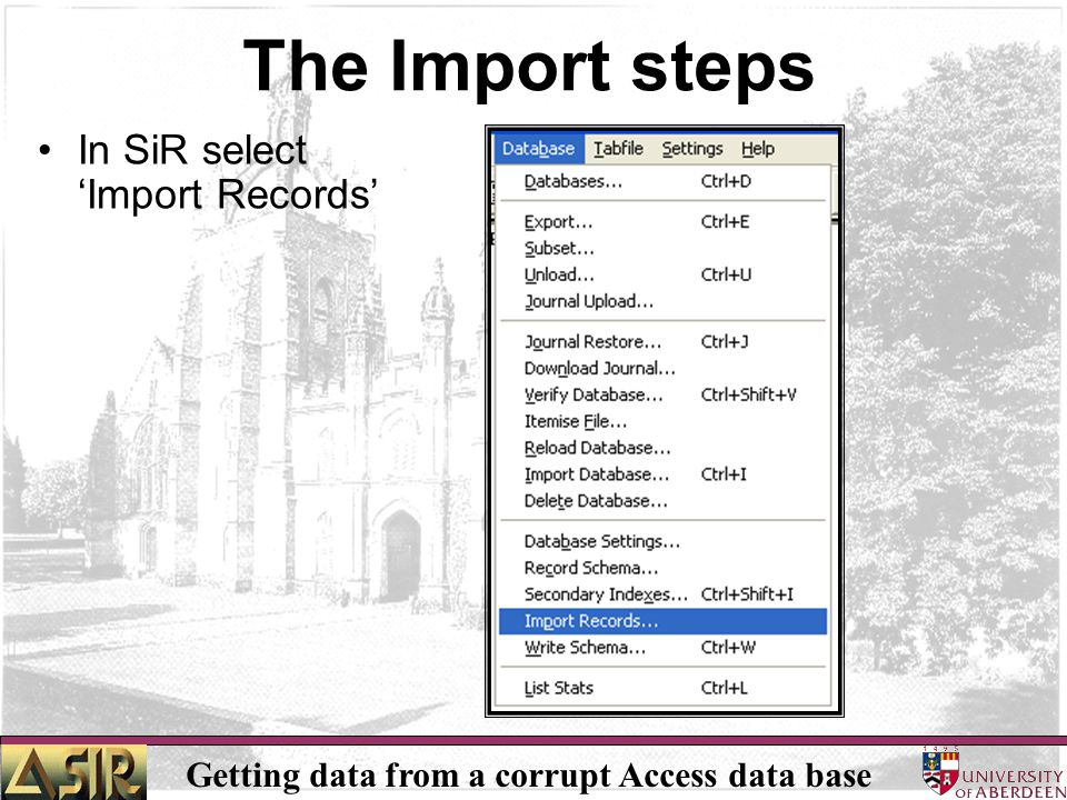 Getting data from a corrupt Access data base The Import steps In SiR select 'Import Records'