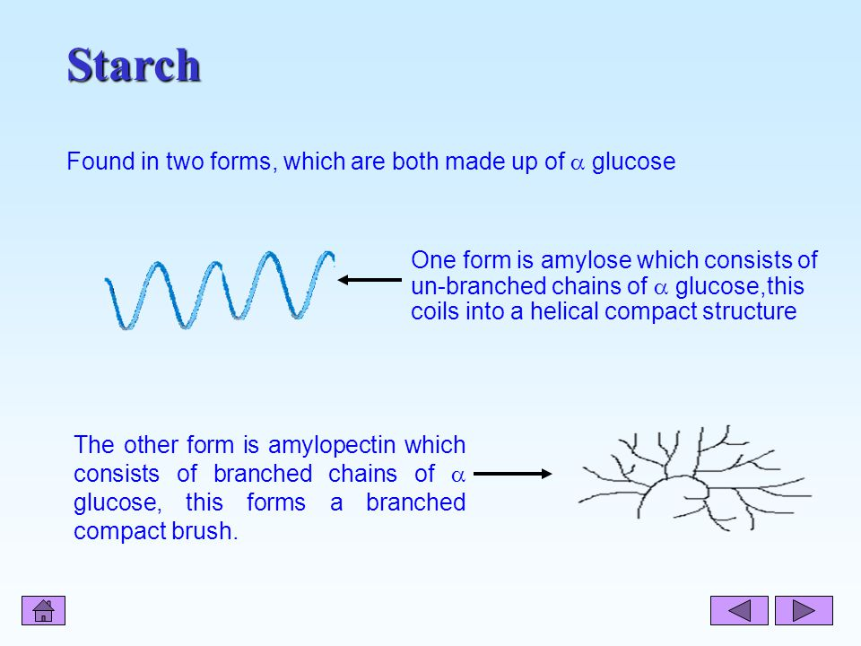 Starch Starch The other form is amylopectin which consists of branched chains of  glucose, this forms a branched compact brush.