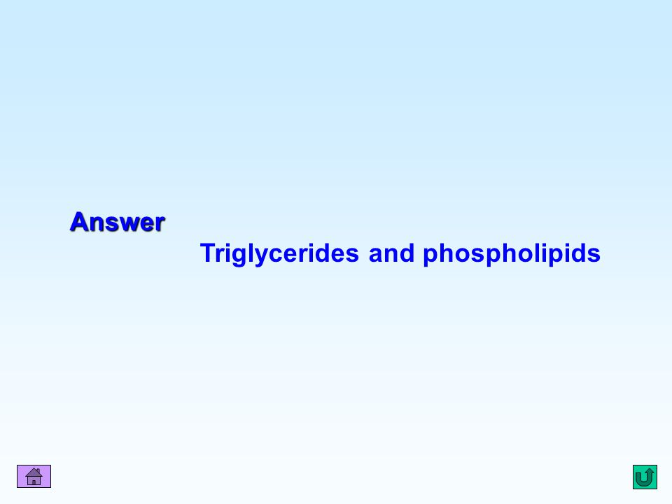 Q10 Answer Triglycerides and phospholipids