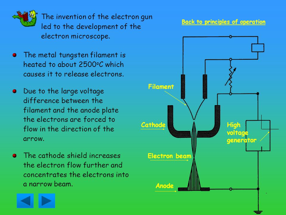 The invention of the electron gun led to the development of the electron microscope.