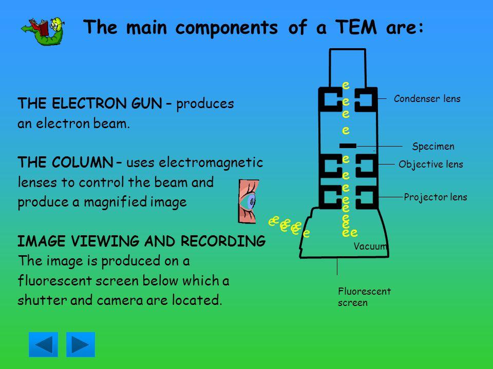 PRINCIPLES OF OPERATION OF TEM Specimen holder Electron gun Projection chamber